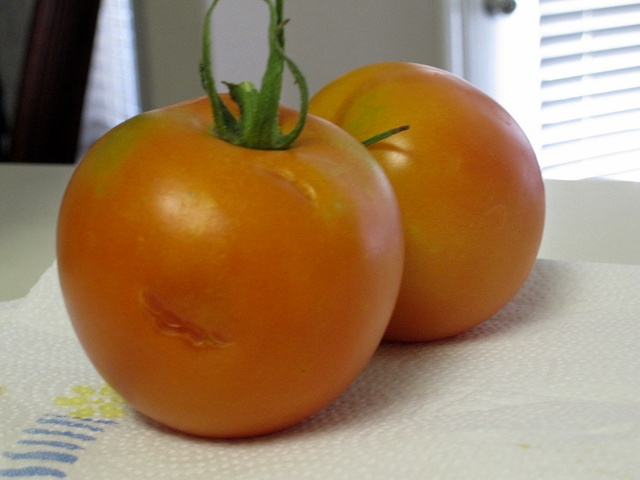 Teeth marks on the tomato. :)