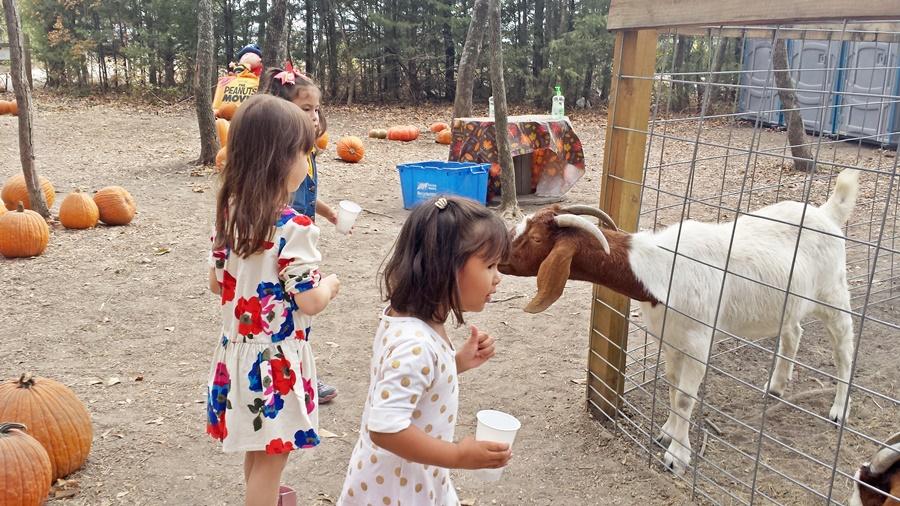 """Goat: """"Let me tell you a secret, Lexi."""""""